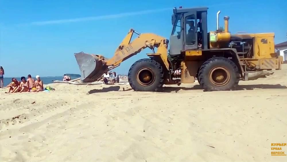 ВИДЕО: Кто на пляже в Бердске лишний?
