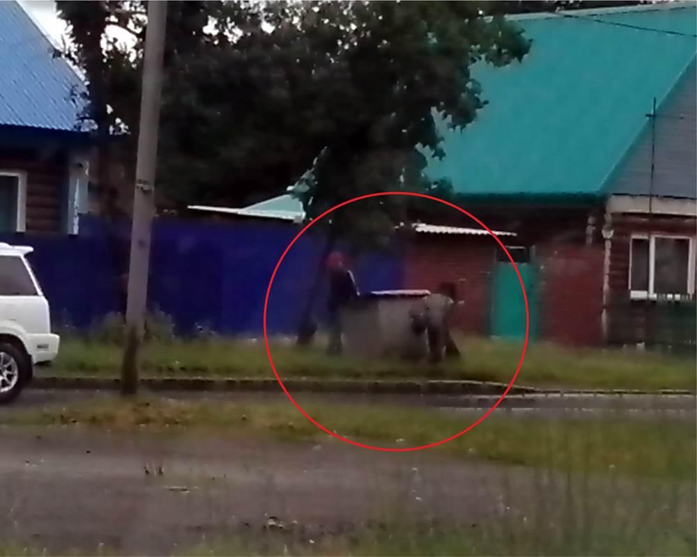 ВИДЕО: Ищут что-то возле мусорки в центре Бердска