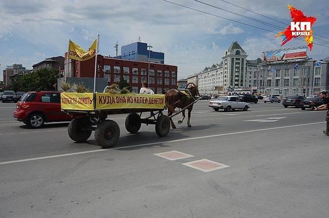 В Новосибирске движение гужевого транспорта запрещает мэрия
