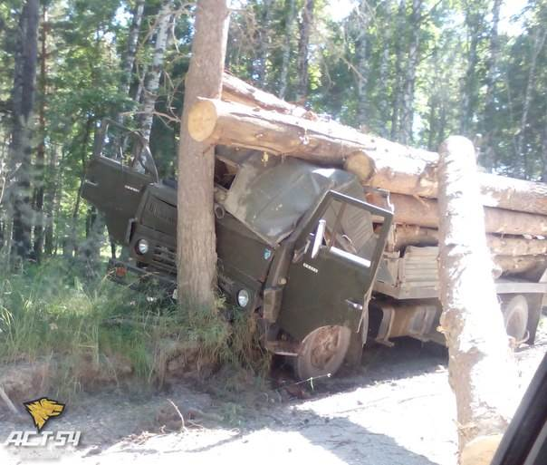 ФОТОФАКТ: Ехал лесом, ехал с лесом…