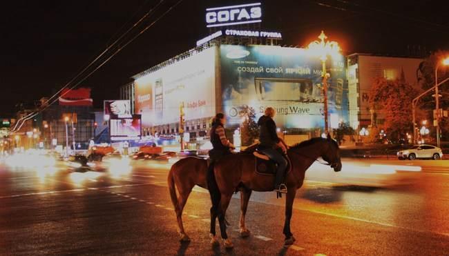 В Новосибирске лошадью пройдутся по бездорожью