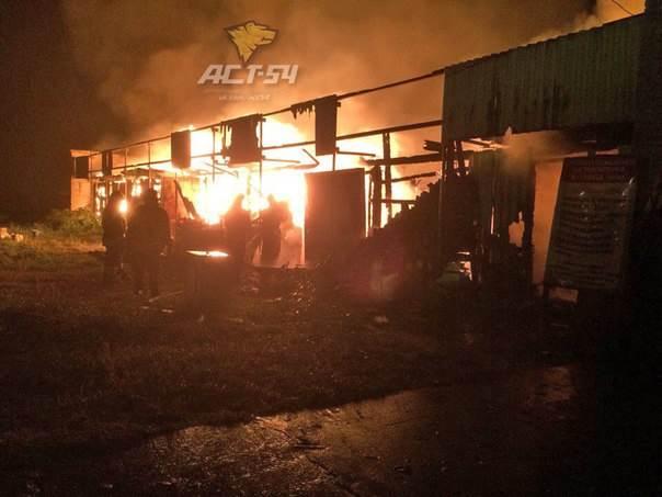 В пожаре в яхт-клубе в Советском районе погиб бердчанин