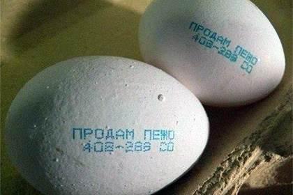Директор птицефабрики разместил объявление о продаже авто на яйцах