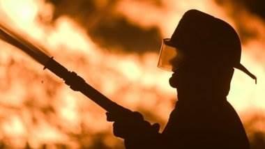 Автомобиль, 12 кур и собака сгорели на пожаре в Бердске