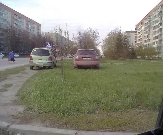 «Стопхам» по-бердски: Паркуются на газонах в Бердске? Идите в АТИ!