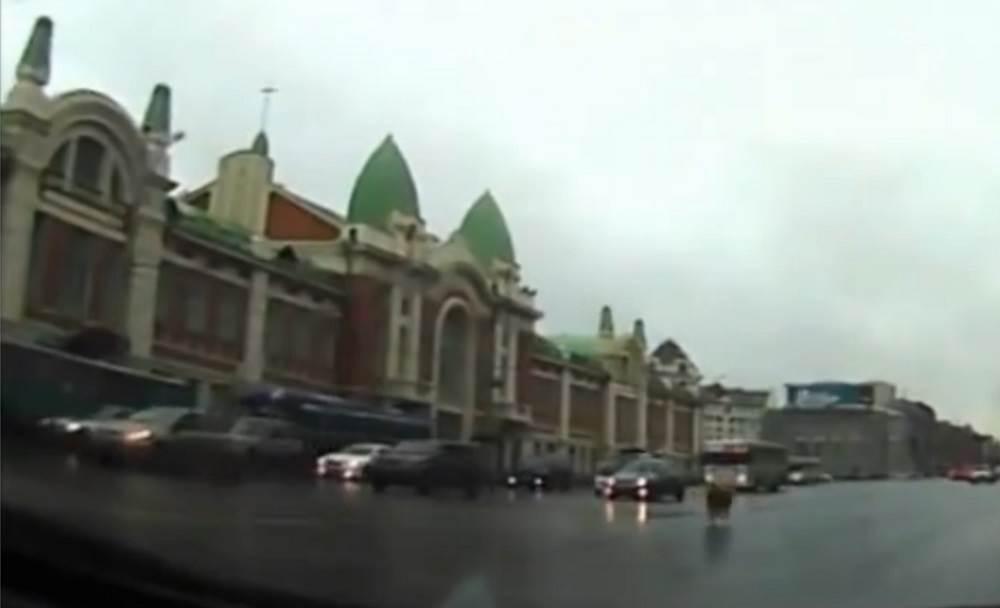 Баран «дрифтанул» с праздника в Новосибирске и погиб под колёсами авто