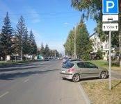 Фотофакт с комментарием: Финансовый «клондайк» в центре Бердска