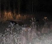 В Искитимском районе в ДТП погиб 60-летний бердчанин