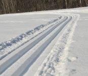 Лыжник умер на лыжне в районе БЭМЗа в Бердске