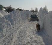 Бердчане жалуются на власти Бердска в региональное правительство и намерены «дойти до Москвы»