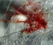 Два человека погибли и ранена 12-летняя девочка в лобовом столкновении на трассе М-52 под Черепаново