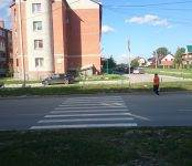 Фотофакт: «Зебры» ведущие в никуда обнаружены в Бердске