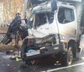 В Новосибирской области в столкновении двух грузовиков погиб один из водителей