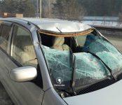 Фотофакт: Дорожники спилили аварийное дерево и уложили его на Мазду