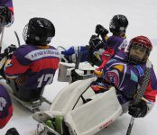Такой хоккей чиновникам Бердска не нужен!