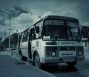 В Бердске с сегодняшнего дня будет курсировать «ночной автобус»