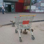 С парковки у «Астора» в Бердске неизвестные подростки угнали продуктовые тележки