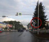 Фотофакт: Ёлка ограничивает обзор дорожных знаков в Бердске