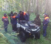 Второй день ищут пропавшую в лесу женщину спасатели Бердска