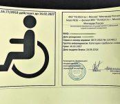 ВРоссии начали выдавать новые индивидуальные знаки «Инвалид»
