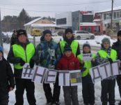 В Бердске прошел «День безопасных дорог»