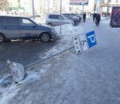 Знак «Парковка для инвалидов» рухнул на тротуар в центре Бердска