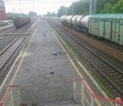 Дочь погибшего на станции Бердск мужчины заставила заплатить за смерть отца РЖД