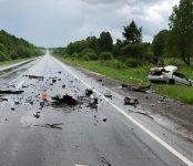 Трое погибли в ДТП на трассе в Новосибирской области