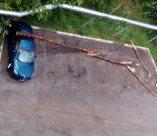 15-минутный шторм отметился в Бердске падением деревьев на машины и затоплением городских дорог