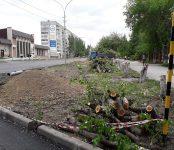 Вырезали яблоневую аллейку на улице Лунная в Бердске