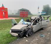 Погибла пассажирка «Лады» в столкновении легковушки с трактором на трассе Р-256