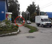 Пень и мусорка ограничивают обзор на аварийно-опасном перекрёстке в Бердске?