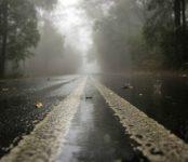 Предупреждает МЧС: на дорогах Новосибирской области ожидаются туманы