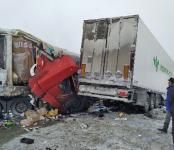 На трассе в Новосибирской области погиб дальнобойщик