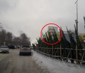 Новогодние ёлки у «Астора» в Бердске загораживают дорожный знак