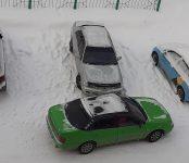 Драматичные разборки под Новый год устроила пара в центре Бердска