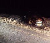 4 человека, в том числе двое детей, погибли в ДТП на трассе в НСО