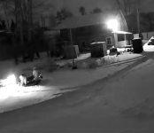 В пять минут исчез снегоход со стоянки в Бердске