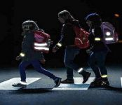 ГИБДД региона просит пешеходов Бердска: станьте видимыми ночью!