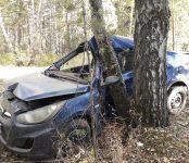 Два человека серьёзно пострадали в такси, врезавшемся в дерево в Бердске