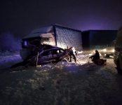В Новосибирском районе в ДТП с фурой погибли два человека из легковушки