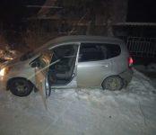 Угнали Honda Fit, испинав ногами по голове хозяйку авто, четверо злоумышленников в Новосибирске (видео 18+)