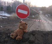 Глава Бердска распорядился привести в порядок дорогу на кладбище