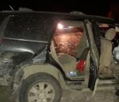 8-летний ребенок и мужчина погибли в ночном ДТП на трассе Р-256 в Черепановском районе