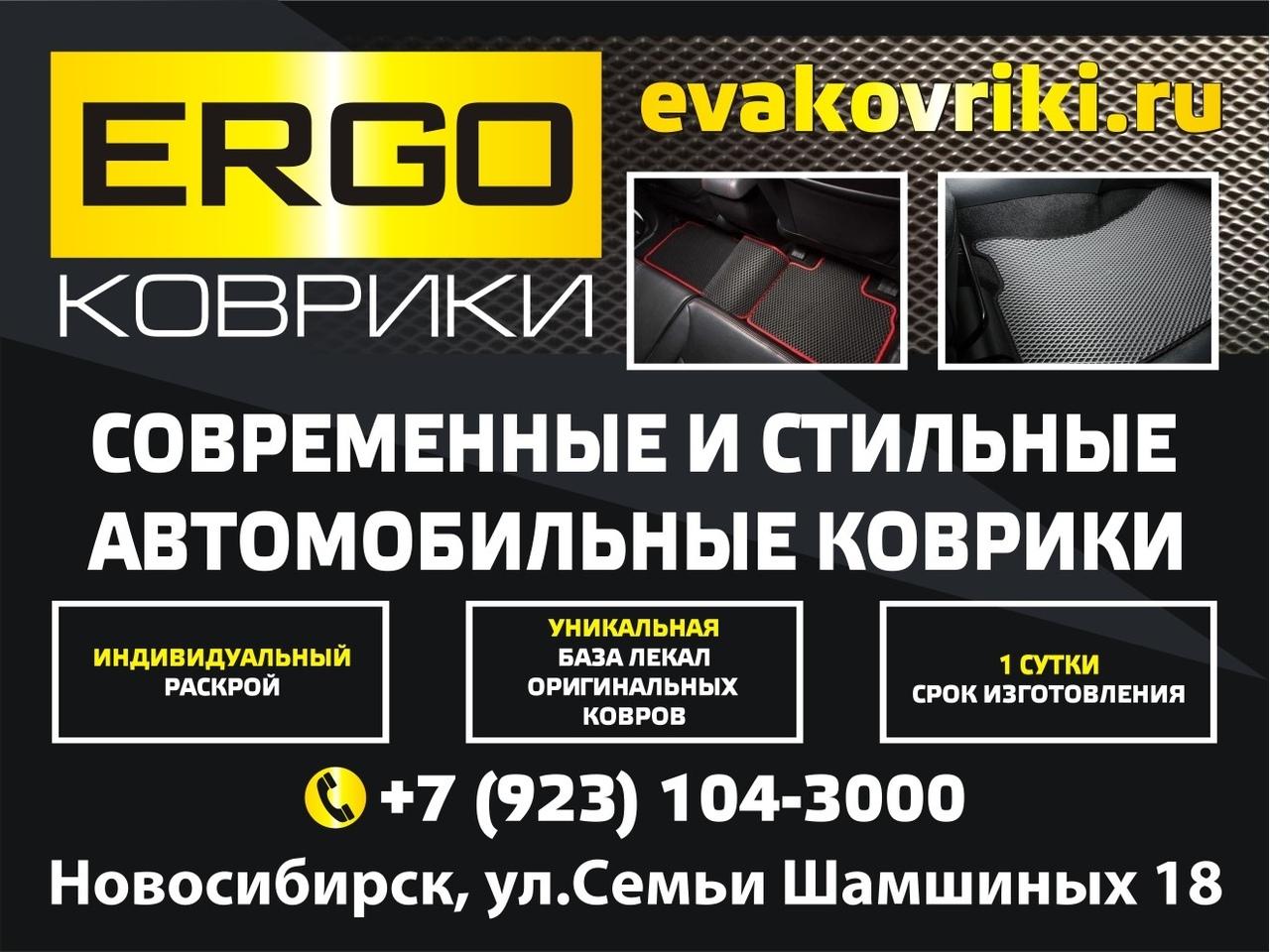 Автомобильные коврики ERGO